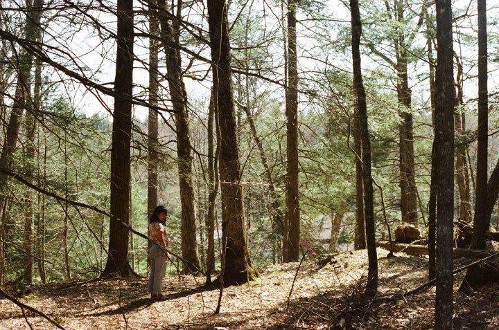film, upstate, new york, NY, 35mm, los angeles, portrait, documentary, canon ae1, woods, outdoors, nature, photography, cabin, forest, grain, experiments, love film,