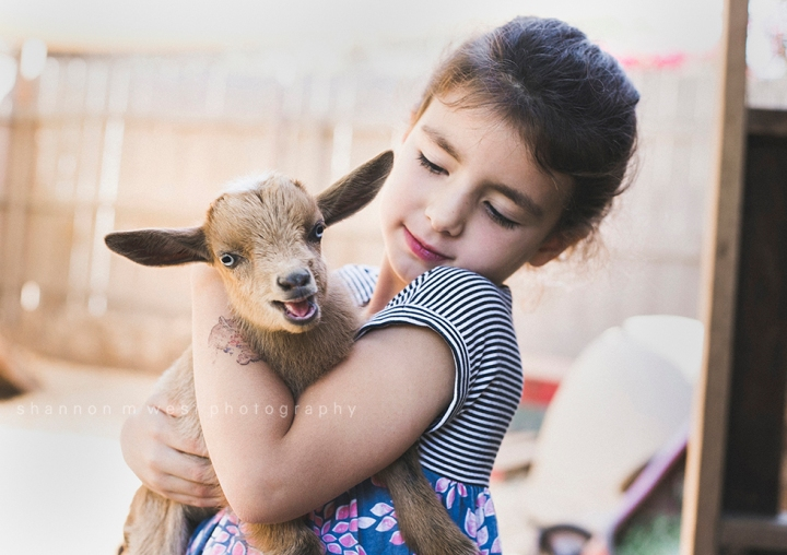 The Little Farm in Altadena | A Family Portrait Session